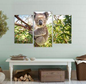 картина от 3 части; картина от три части; картина от части; коала; картина коала; мече; картина с животни; картина животни; декоративно пано; декорация за стена; висококачествен печат; картина с висока резолюция; снимка върху платно; канава; картина; картина за стена; картина на PVC; картина на канава; картина природа; природа; природен пейзаж;